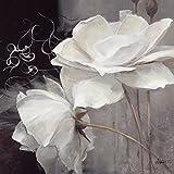 Eurographics Leinwandbild, Wealth of Flowers II, weiße Blumen, Gemälde, weiß, schwarz, 30 x 30 x 2,5 cm