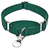 Dazzber Training Martingale Dog Collar in Green, Large, Neck 46cm-66cm, Adjustable Collars for Dogs