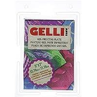 CDKJ 3D Gelatine Art Tools Set von 10 St/ück Jelly Cake Edelstahl Nadeln kommen mit Einer Spritze Pudding Geb/äck D/üsen 1 Satz