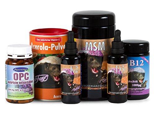 Robert Franz - D3-Tropfen (50 ml) + K2-Tropfen (50 ml) + Acerola (175 g) + MSM-Kapseln (360 Stück) + B12-Pastillen (100 Pastillen) + OPC (120 Stück) von Ayursana (Natürlich Vitamine Nattokinase)