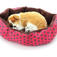 TYIOWALI Pet Products Algodón Perro Mascota Cama para Gatos Perros Pequeños Animales Cama Casa Cojín Camas