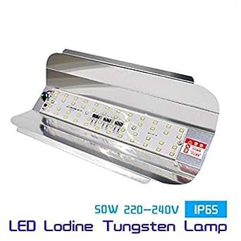 Citra Led Flood Light 50W Ip65 Waterproof 220V 240V Iodine Tungsten Lamp ,White