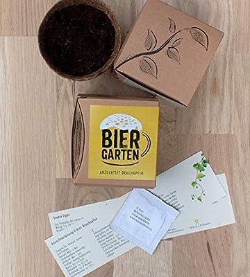 """Geschenk-Anzuchtset """"Biergarten"""" - Echter Brauhopfen von Naturkraftwerk e. U. bei Du und dein Garten"""
