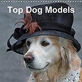 Top Dog Models (Wall Calendar 2018 300 × 300 mm Square): Unususal and expressive dog pictures (Monthly calendar, 14 pages ) (Calvendo Animals) ... Voigt-Papke + www. pferdografen. de, Gabriele