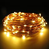 USB Copper LED String Lights, 5m 50 LEDs, Waterproof Indoor String Light Outdoor Diwali, Christmas Lights Waterproof Starry String Lights For DIwali,Christmas, Party, Holiday, Halloween(Warm White)