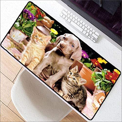 Kaidanba Niedlicher Hund Katze groß 900x40 / 700x300 / 600x300mm Weltkarte Gummi Mauspad Computerspiel Tablet Mousepad mit Kantenverriegelung,250X290X2MM -