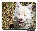 Gaming-Mauspads, Mauspad, Welpenfrühlings-glücklicher Hund-Tier-Haustier jung nett