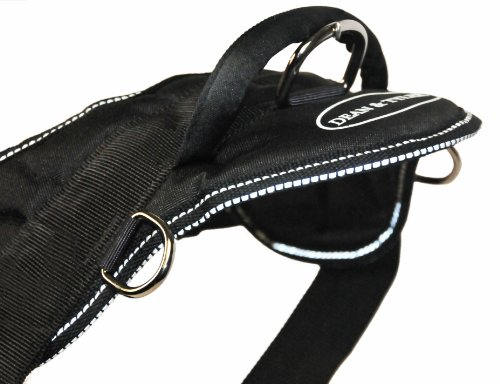 Dean-Tyler-DT-Dog-Harness-with-Reflective-Trim-L-Black