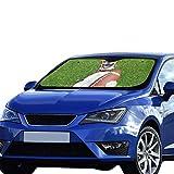 Autositz Fensterschutz Fußball Hund hält Rugbyball Lachen Faltbarer Sonnenschutz Für maximalen UV- und Sonnenschutz Halten Sie Ihr Fahrzeug kühl 140 x 75 cm (55 x 30 Zoll) Lustiger Autofensterschutz