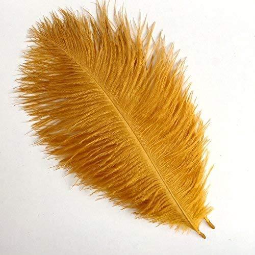 kolight Set von 5015,2cm ~ 20,3cm (15~ 20cm) natur Strauß Federn für Heimwerker Home Hochzeit Party Büro Dekoration gold (Boa Gold Feather)