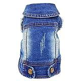 SILD - Chaqueta Vaquera con Capucha para Perros medianos y pequeños, diseño Vintage Desgastado, Color Azul (M)