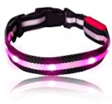 Leuchtendes LED- Sicherheits- Hundehalsband, extrem hell, längenverstellbar und mit 3 Leucht-Modi (S:19cm - 37cm, PINK)
