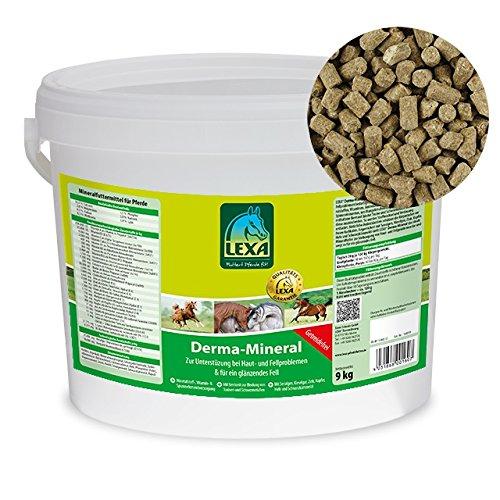 Lexa Derma-Mineral-9 kg Eimer