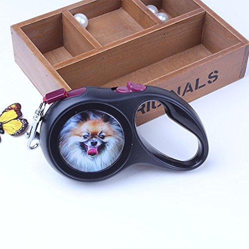 KANDIAIALAutomatische einziehbaren Zugseil für bis zu 50 lb Haustiere hund Handler/Kette/Seil,Schwarz500 cm