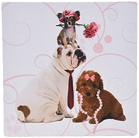 3dRose 8 x 8 x 0.25 Inches Mouse Pad, Bulldog in Necktie, Papillion Dog in Pink Hat and Terrier in Pearls (mp_127599_1)