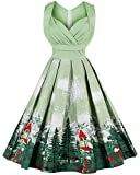 CharMma Women's 1950s Vintage High Waist Floral Print Rockabilly Swing Dress (Medium)