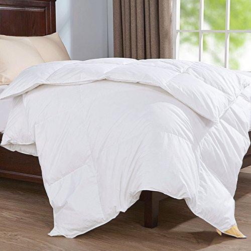 puredown Deluxe Sommer Bettdecke, 135x200cm Daunendecke, Gänseflaum Bettwäsche, 4 Jahreszeiten, Leicht, Öko-Tex (Darüber Hinaus Bettwäsche)