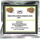 #4: WOOD APPLE-LIMONIA ACIDISSIMA SEEDS 5 GM