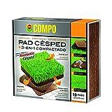 Compo 2532502011 - Pad césped, 1 er pack (10 unidades)