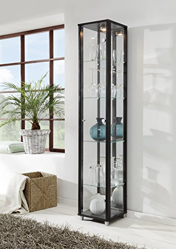 Black Single Door Glass Display Cabinet with Mirror Back, 4 Moveable Glass Shelves & Spotlight