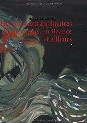 Histoires Extraordinaires de Chez Nous, En Beauce Et Ailleurs de Andre Lejeune (19 septembre 2013) Broché