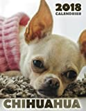 Chihuahua 2018 Calendrier (Edition France)