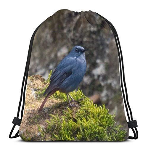 Cap pillow Blue Bird Exotic Blue Color Custom Drawstring Shoulder Bags Gym Bag Travel Backpack Lightweight Gym for Man Women 16.9