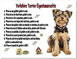 Merchandise for Fans Blechschild/Warnschild/Türschild - Aluminium - 20x30cm Eigentumsrechte Motiv: Yorkshire Terrier (01)
