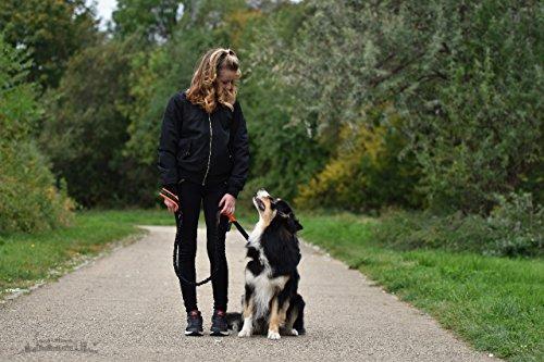 Hundeleine Best Dog reflektierend mit Ruckdämpfer für große Hunde – mit weichen Neopren-Griffen - 5