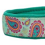 Blueberry Pet 1,5cm S Paisley-Druck Inspiriertes Ultimatives Hell-Smaragdgrün Neopren-Gepolsterte Hundehalsband, Kleine Halsbӓnder für Hunde - 4