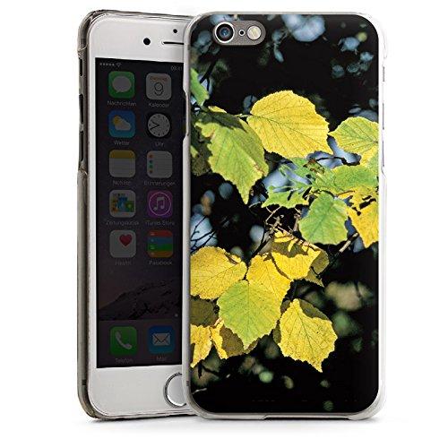 Apple iPhone 5s Housse Étui Protection Coque Feuilles Automne Bouleau CasDur transparent