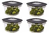 Rubbermaid Easy Find Deckel PREMIER Food Container, rot, Eddington (fg7h75trchili) 4er-Packung grau
