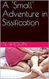 A 'Small' Adventure in Sissification (English Edition)
