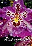 Blütenpracht (Wandkalender 2018 DIN A4 hoch): Blütenpracht (Monatskalender, 14 Seiten ) (CALVENDO Natur) [Kalender] [Apr 01, 2017] Baumgartner, Katja