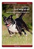 ...und weg ist er!: Jagdverhalten und mögliche Alternativen (Expertenwissen für Hundehalter) -
