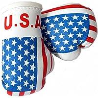 Mini Guantes de boxeo USA/América, 1par (2pieza) Mini guantes de boxeo por ejemplo para Auto de espejo interior