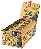 Energie Riegel vegan als Rawllin'Balls mit Protein, 12 X 48 g -> 3 Kugeln à 16 g, raw energy bar (Blueberry + Chia)