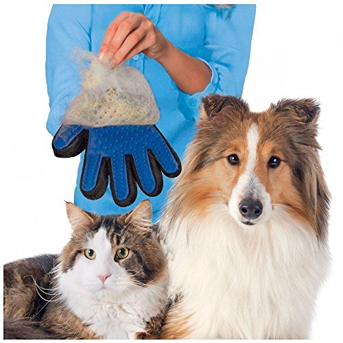 odn-haustier-pflege-massage-haarentfernung-bad-burste-handschuh-hund-katze-haar-kamm