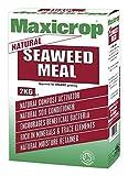 Maxicrop 554220 Organisches Seetang-Granulat, 2kg