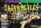 Look Once, Look Again: Skin & Scales (Look Once, Look Again: Science) by Schwartz, David M. (1998) Paperback