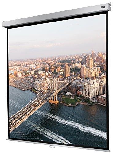 celexon manuell ausziehbare Rollo-Beamer-Leinwand Professional Plus - 200 x 200 cm - 1:1 - Gain 1,2 - Full-HD und 4K