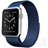 TrueUpgrade Replacement Loop Band Strap Watch Strap Compatible With Apple Watch IWatch Series 1, Series 2 , Series 3 42MM Blue Plus Screen Guard (Watch Not Included)