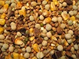 BIG CARP Partikel Mix 10Kg