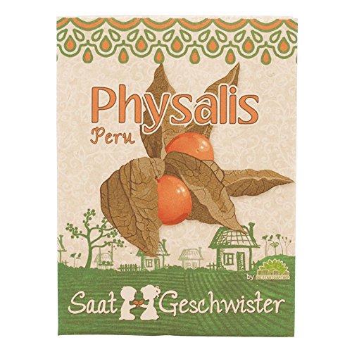 physalis-peru-saatgut-zuckersusser-geschmack