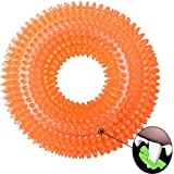 Pet Puppy Dog Squeaky Chew Toys for Aggressive Chewers Dental Teething Cleaning [Non-Toxic Soft Natural Rubber], Cute Crystal Ring Design -4.92 inches (Orange)