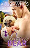 Papa Bear: Volume 1 (Finding Fatherhood)