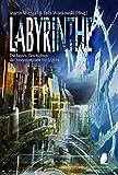 Labyrinthe: Die besten Geschichten der Storyolympiade 2015/2016