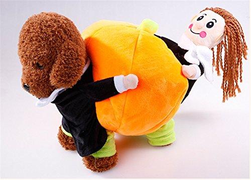 Funny Halloween Pet Kostüm für kleine Hunde und Katzen pinwei Hund Kostüm, Kürbis Katze Kleidung Halloween Tag Pet (Funny Terrier Boston Kostüme)