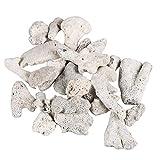 TELLW Aquarium-Filtermaterial Korallensand Korallenstein Koralle Knochen Koralle Sand Sediment Filtermaterial