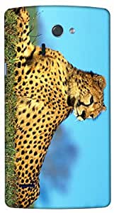 Timpax protective Armor Hard Bumper Back Case Cover. Multicolor printed on 3 Dimensional case with latest & finest graphic design art. Compatible with LG G4 ( H815 ) Design No : TDZ-29021